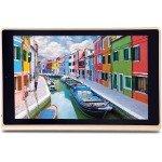 iBall Elan 4G2 Plus 10.1 inch Tablet Rs.611 Debit card EMI and bajaj finance card